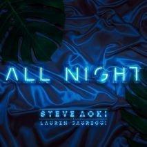 Steve aoki lauren all night